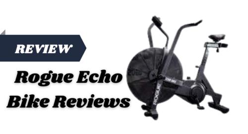 Rogue Echo Bike Reviews